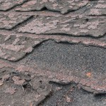 maple-ridge-roofing-free-estimates