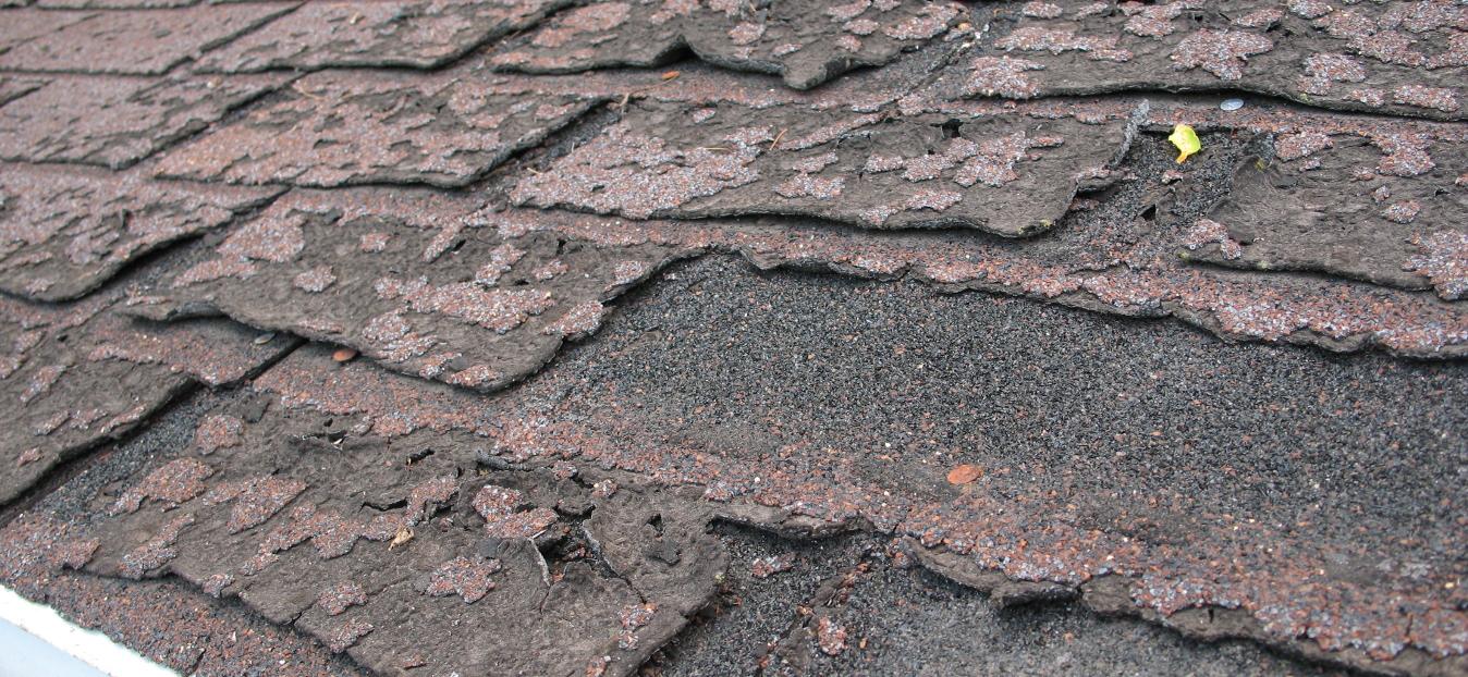 maple-ridge-roofing-free-estimates